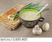 Купить «Грибной суп-пюре (греческая кухня)», фото № 3895405, снято 9 августа 2012 г. (c) Татьяна Ляпи / Фотобанк Лори