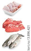 Свежая курица, мясо и рыба на белом фоне. Стоковое фото, фотограф Анастасия Мелешкина / Фотобанк Лори