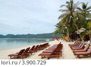Купить «Пляж с лежаками и кокосовыми пальмами, остров Самуи, Таиланд», фото № 3900729, снято 10 сентября 2010 г. (c) Хмельницкий Вячеслав / Фотобанк Лори