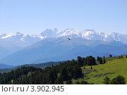 Купить «Катунский хребет, гора Белуха, Горный Алтай», фото № 3902945, снято 30 июля 2010 г. (c) Анна Омельченко / Фотобанк Лори