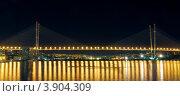 Купить «Ночной Владивосток. Мост через бухту Золотой Рог.», фото № 3904309, снято 6 октября 2012 г. (c) Сергеев Игорь / Фотобанк Лори