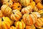 Урожай тыквы на рыночном прилавке осенью, фото № 3910925, снято 11 сентября 2011 г. (c) Николай Винокуров / Фотобанк Лори