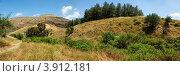 Живописные холмы с желтой травой и зелеными деревьями. Стоковое фото, фотограф Shlomo Polonsky / Фотобанк Лори