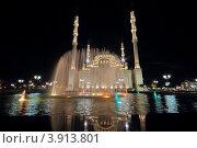 """Грозный, столица Чечни. Ночное освещение мечети """"Сердце Чечни"""" и фонтан, эксклюзивное фото № 3913801, снято 26 сентября 2010 г. (c) A Челмодеев / Фотобанк Лори"""