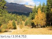 Купить «Осенний лес. Курорта «Архыз». КЧР», эксклюзивное фото № 3914753, снято 30 сентября 2012 г. (c) Rekacy / Фотобанк Лори
