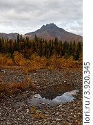 Купить «Гора Манарага», фото № 3920345, снято 26 августа 2012 г. (c) Андрей Мелкозеров / Фотобанк Лори