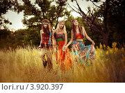 Три девушки-хиппи в поле. Стоковое фото, фотограф Boris Bushmin / Фотобанк Лори