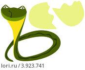 Купить «Новорожденная змейка», иллюстрация № 3923741 (c) Вячеслав Беляев / Фотобанк Лори