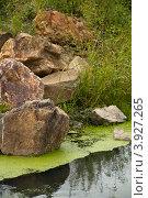 Камни на берегу озера. Стоковое фото, фотограф Евгений Дедовец / Фотобанк Лори