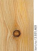 Купить «Структура древесины сосны», фото № 3931469, снято 15 октября 2012 г. (c) Анна Мартынова / Фотобанк Лори