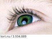 Зеленый глаз ребенка крупным планом. Стоковое фото, фотограф Петеляева Татьяна / Фотобанк Лори