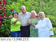 Купить «Четверо счастливых пожилых людей на дачном участке показывают большие пальцы вверх», эксклюзивное фото № 3948213, снято 30 мая 2012 г. (c) Анна Мартынова / Фотобанк Лори