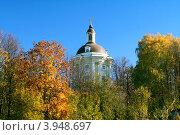 Осень золотая (2010 год). Стоковое фото, фотограф Людмила Маркина / Фотобанк Лори