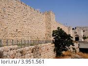 Купить «Стена Старого города, Иерусалим», фото № 3951561, снято 27 июля 2012 г. (c) Голубев Андрей / Фотобанк Лори