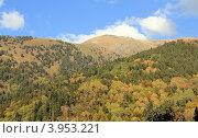 Купить «Осенний лес. Курорт «Архыз». КЧР», эксклюзивное фото № 3953221, снято 30 сентября 2012 г. (c) Rekacy / Фотобанк Лори