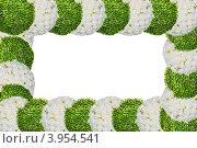 Рамка из цветов. Стоковая иллюстрация, иллюстратор Евгений Егоров / Фотобанк Лори