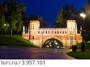 Усадьба Царицыно, ночь (2012 год). Редакционное фото, фотограф Екатерина Романова / Фотобанк Лори