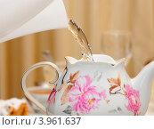 Купить «Заваривание чайника», эксклюзивное фото № 3961637, снято 5 января 2012 г. (c) Юрий Морозов / Фотобанк Лори