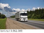 Грузовик Рено на трассе (2012 год). Редакционное фото, фотограф Голованов Сергей / Фотобанк Лори