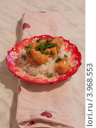 Курица масала. Стоковое фото, фотограф Виктория Козикова / Фотобанк Лори