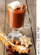 Купить «Горячий шоколад, пряники и специи», фото № 3969749, снято 26 октября 2012 г. (c) Николай Охитин / Фотобанк Лори