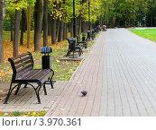 Купить «Парк. Скамейки. Осень.», фото № 3970361, снято 25 сентября 2012 г. (c) Елена Мусатова / Фотобанк Лори