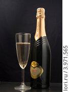 Шампанское (2012 год). Редакционное фото, фотограф Чуракова Анна / Фотобанк Лори