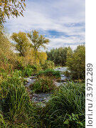 Река осенью. Стоковое фото, фотограф Андрей Корж / Фотобанк Лори