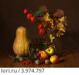 Натюрморт с тыквой, яблоками и физалисом. Стоковое фото, фотограф Наталья Райхель / Фотобанк Лори