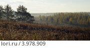 Купить «Утро туманное», фото № 3978909, снято 14 октября 2012 г. (c) Александр Шуть / Фотобанк Лори