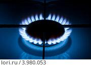 Купить «Пламя на газовой плите», фото № 3980053, снято 4 января 2011 г. (c) Галина Онищенко / Фотобанк Лори