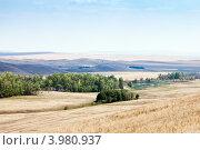 Купить «Сельский пейзаж. Оренбуржье», фото № 3980937, снято 4 августа 2012 г. (c) Вадим Орлов / Фотобанк Лори
