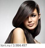 Купить «Красивая девушка с гладкими длинными каштановыми волосами», фото № 3984497, снято 17 октября 2012 г. (c) Валуа Виталий / Фотобанк Лори