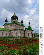 Свято-Покровский женский монастырь в Киеве (2008 год). Стоковое фото, фотограф Владимир Фалин / Фотобанк Лори