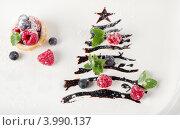 Купить «Сладкая новогодняя елка из шоколадной глазури с ягодами», фото № 3990137, снято 7 октября 2012 г. (c) Tatjana Baibakova / Фотобанк Лори