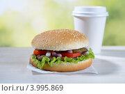 Купить «Гамбургер», фото № 3995869, снято 20 октября 2012 г. (c) Stockphoto / Фотобанк Лори
