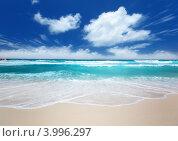 Купить «Волны тропического моря на песчаном пляже», фото № 3996297, снято 3 октября 2012 г. (c) Iakov Kalinin / Фотобанк Лори