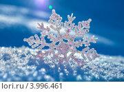 Купить «Снежинка в лучах солнца», фото № 3996461, снято 7 ноября 2012 г. (c) Икан Леонид / Фотобанк Лори