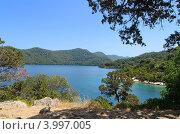 Озеро в национальном парке Млет, Хорватия (2012 год). Стоковое фото, фотограф Александр Тесевич / Фотобанк Лори