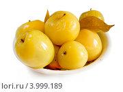 Купить «Моченые яблоки», фото № 3999189, снято 17 декабря 2011 г. (c) Дудакова / Фотобанк Лори