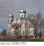 Купить «Бутурлиновка. Покровский храм.», фото № 4001773, снято 3 ноября 2012 г. (c) Алексей Шаповалов (Стерх) / Фотобанк Лори
