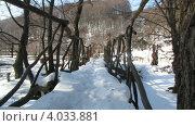 Купить «Деревянный мостик зимой под снегом», видеоролик № 4033881, снято 17 ноября 2012 г. (c) Yaroslav Bokotey / Фотобанк Лори