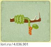 Купить «Винтажная карточка - змея на ветке», иллюстрация № 4036901 (c) Щербанова Татьяна / Фотобанк Лори