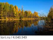 Купить «Осень», фото № 4040949, снято 21 октября 2012 г. (c) Александр Груднина / Фотобанк Лори