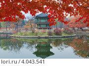 Купить «Восточная беседка отражается в пруду осенью. Сеул, императорский дворец», фото № 4043541, снято 8 ноября 2012 г. (c) Ольга Липунова / Фотобанк Лори
