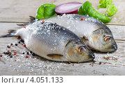 Две жирные сельди, посыпанные крупной солью, лежат на деревянном столе. Стоковое фото, фотограф Tatjana Baibakova / Фотобанк Лори