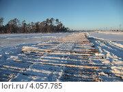 Купить «Лежнёвка на болоте», эксклюзивное фото № 4057785, снято 27 ноября 2012 г. (c) Валерий Акулич / Фотобанк Лори