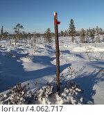 Купить «Вешка на заснеженном болоте», эксклюзивное фото № 4062717, снято 8 ноября 2012 г. (c) Валерий Акулич / Фотобанк Лори