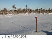 Купить «Вешка на заснеженном болоте», эксклюзивное фото № 4064909, снято 8 ноября 2012 г. (c) Валерий Акулич / Фотобанк Лори