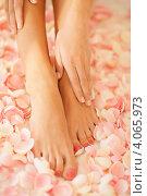 Купить «Женские ухоженные ноги на фоне цветочных лепестков», фото № 4065973, снято 16 сентября 2012 г. (c) Syda Productions / Фотобанк Лори